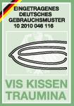 vis_kissen